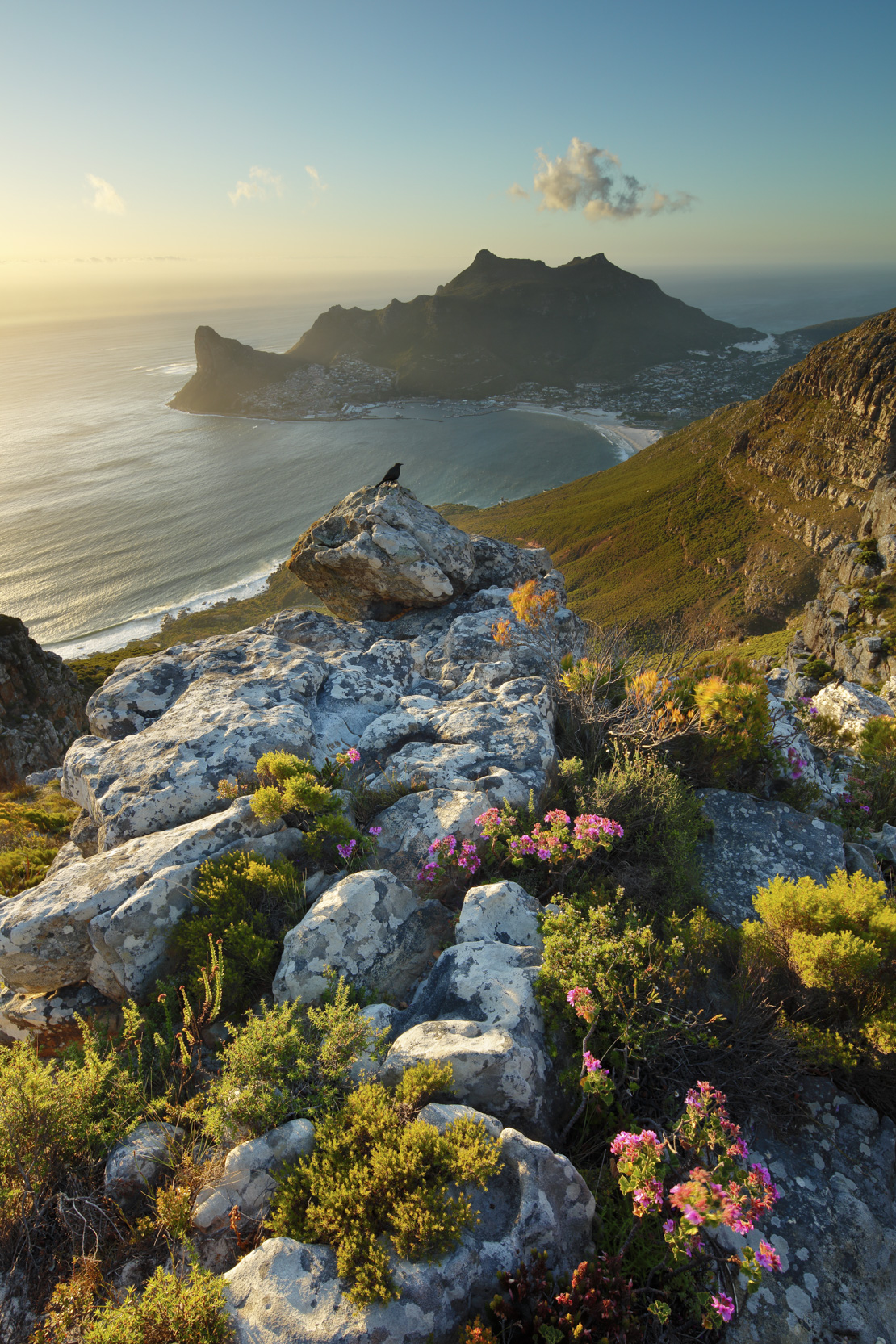 Hout Bay, from Table Mountain National Park, Western Cape, South Africa