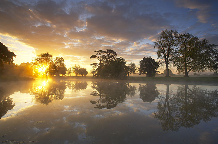 Reflections on the lake at dawn, Croome Park, Worcestershire, England, UK