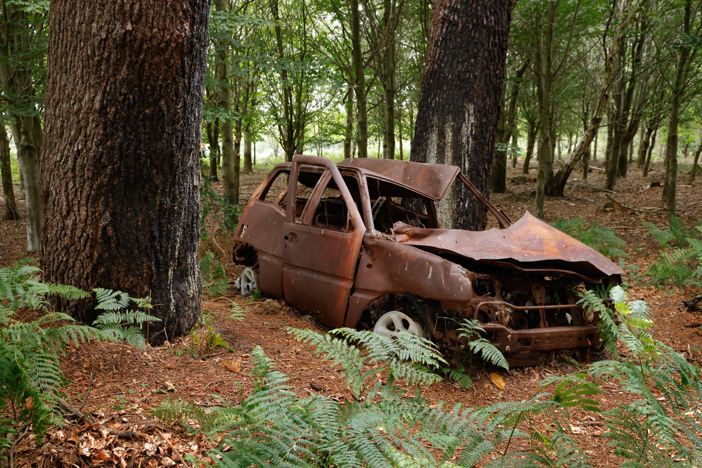 An abandoned car in Wareham Forest, Dorset. Canon EOS R5, RF 24-105mm f4L IS USM Lens at 35mm, 1/60 sec at f/8, ISO 1600