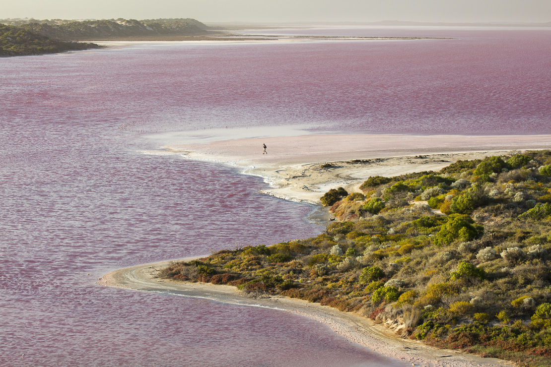 Wendy treading boldly on the shores of the pink Hutt Lagoon at Port Gregory, West Australia