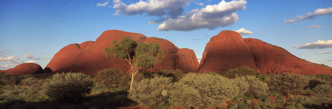 The Olgas, Kata Tjuta, Northern Territories, Australia
