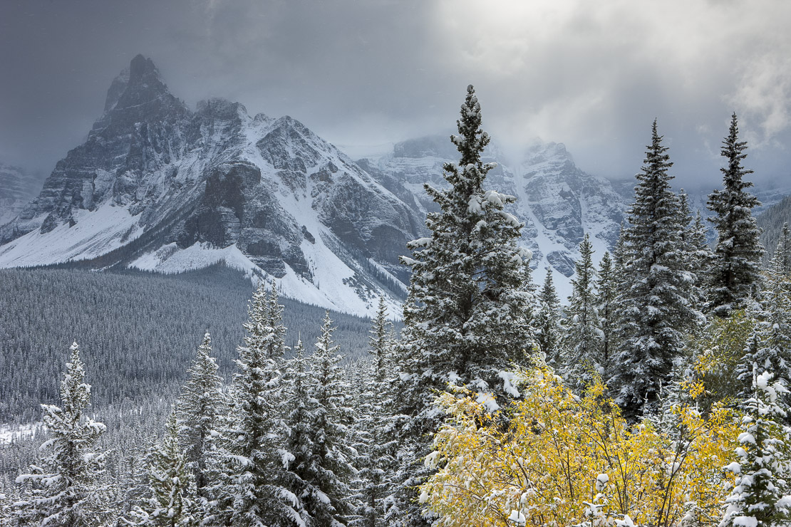 the first snow of winter in the Valley of the Ten Peaks, Banff National Park, Alberta, Canada
