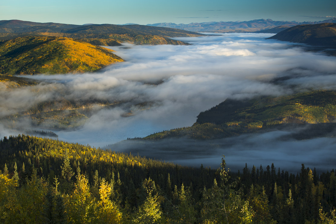 Mist in the valley of the Yukon River at dawn, downstream of Dawson City from Dome Hill, Yukon Territories, Canada