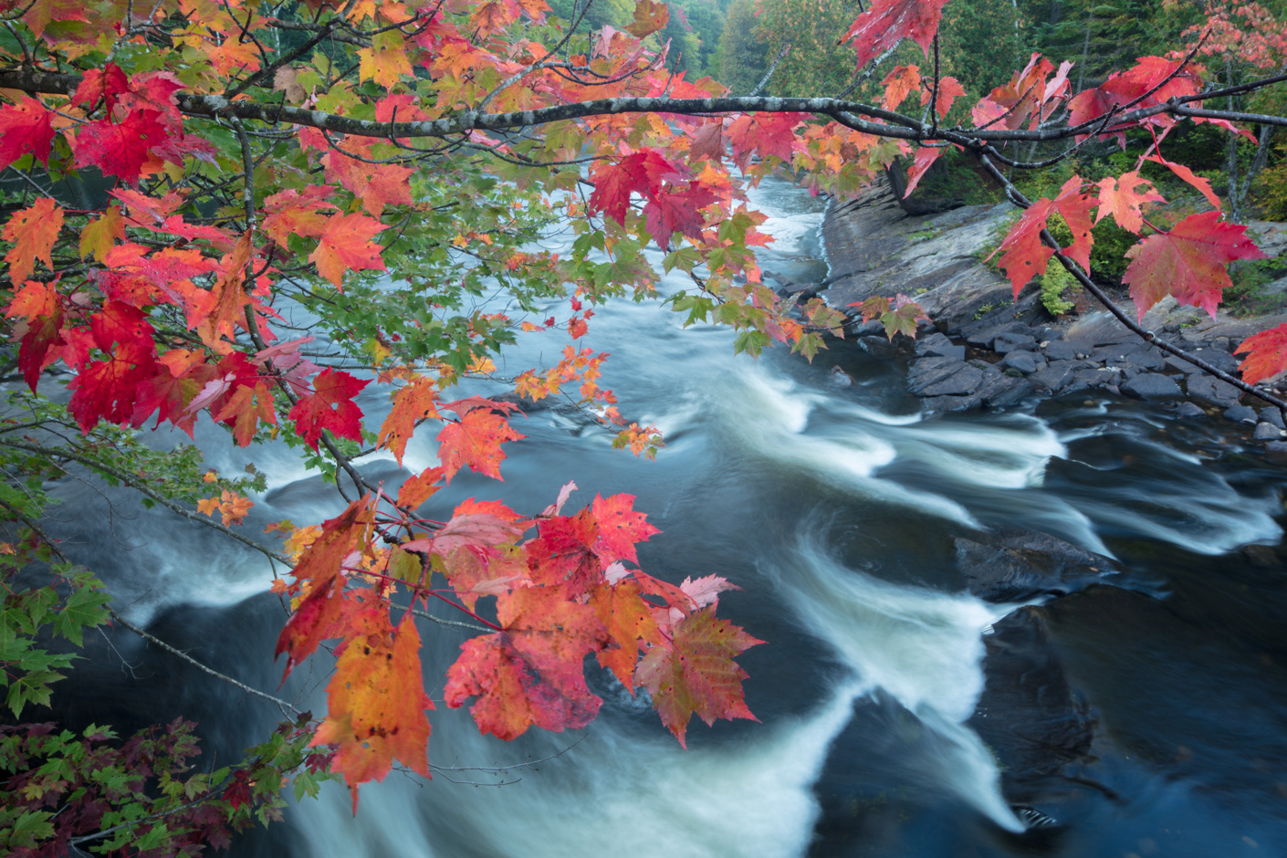 Autumn colours along the Oxtongue River, Oxtongue Rapids Park, Ontario, Canada