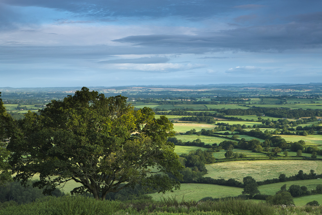 The Blackmore Vale from Bulbarrow Hill, Dorset, England, UK