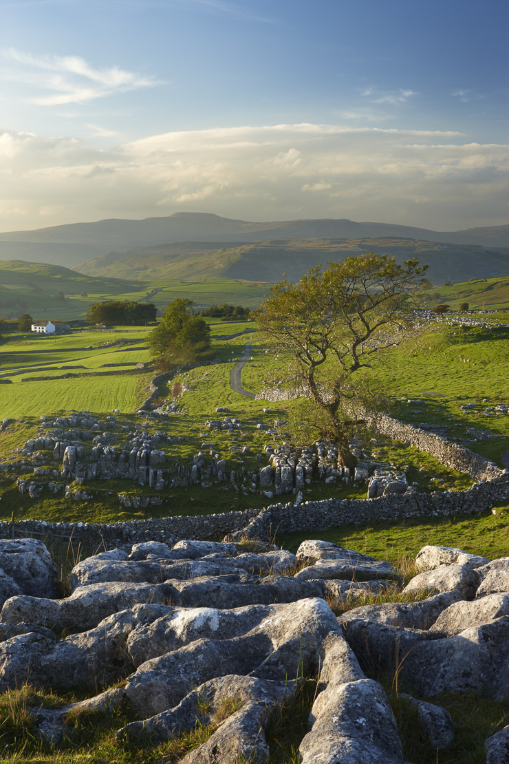 Winskill Stones, Ribblesdale, Yorkshire Dales National Park, England, UK