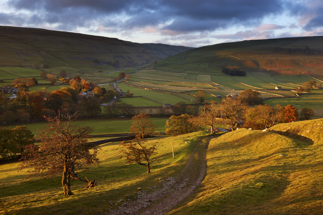 first light on the autumn colours at Arncliffe in Littondale, Yorkshire Dales National Park, England, UK