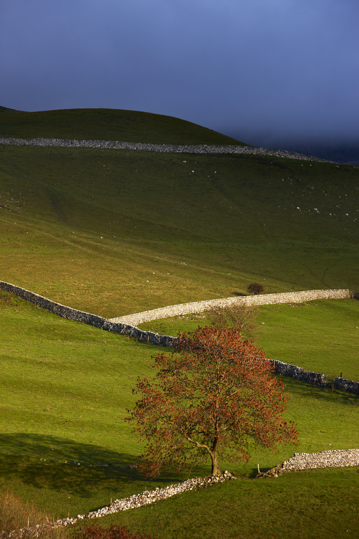 stone walls and barns nr Kettlewell, Wharfedale, Yorkshire Dales National Park, England, UK