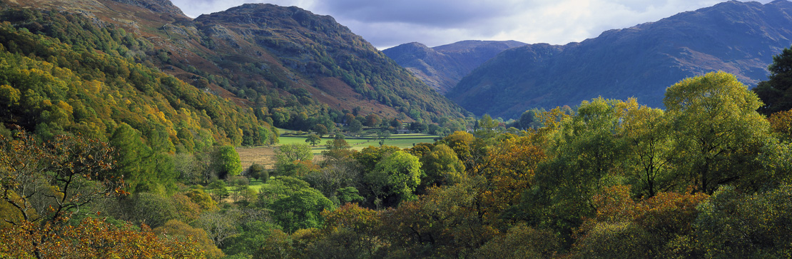 Borrowdale in the autumn, Lake District National Park, Cumbria, England, UK