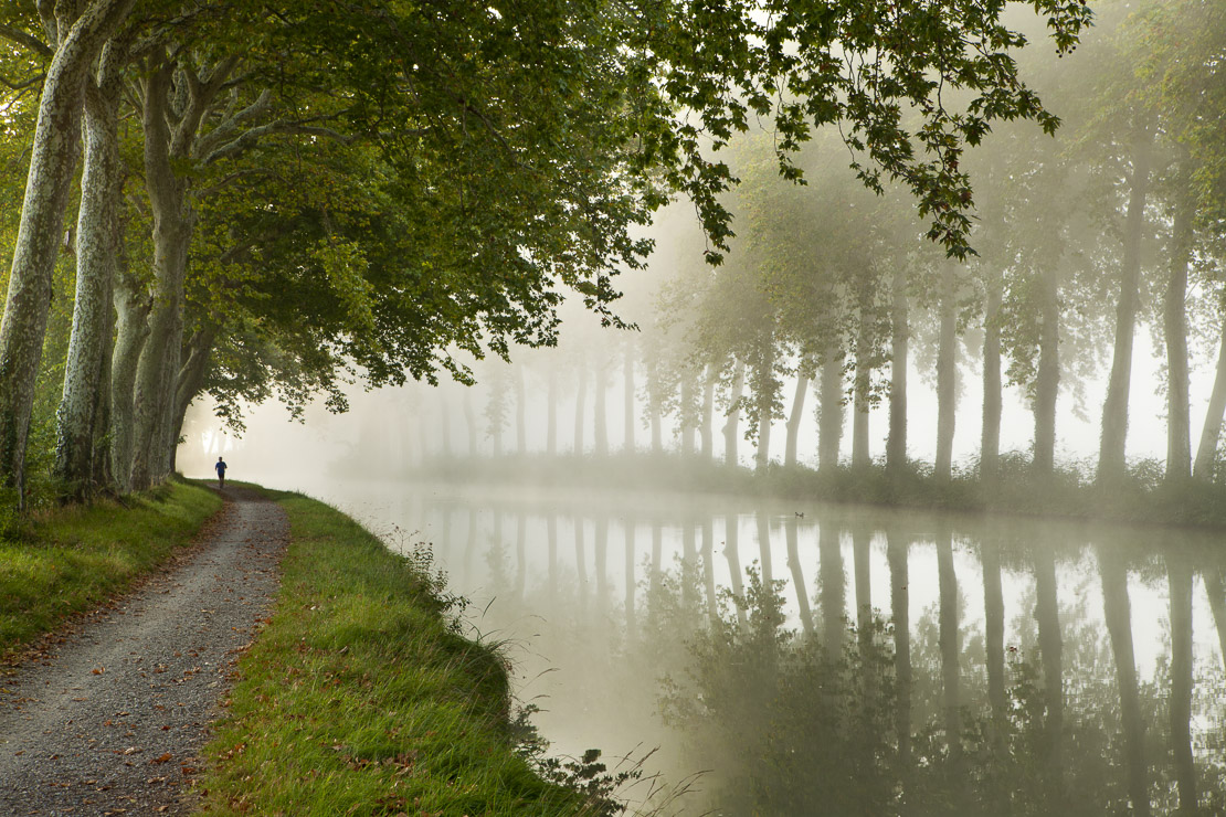 a jogger on the towpath of the Canal du Midi nr Castelnaudary, Languedoc-Rousillon, France