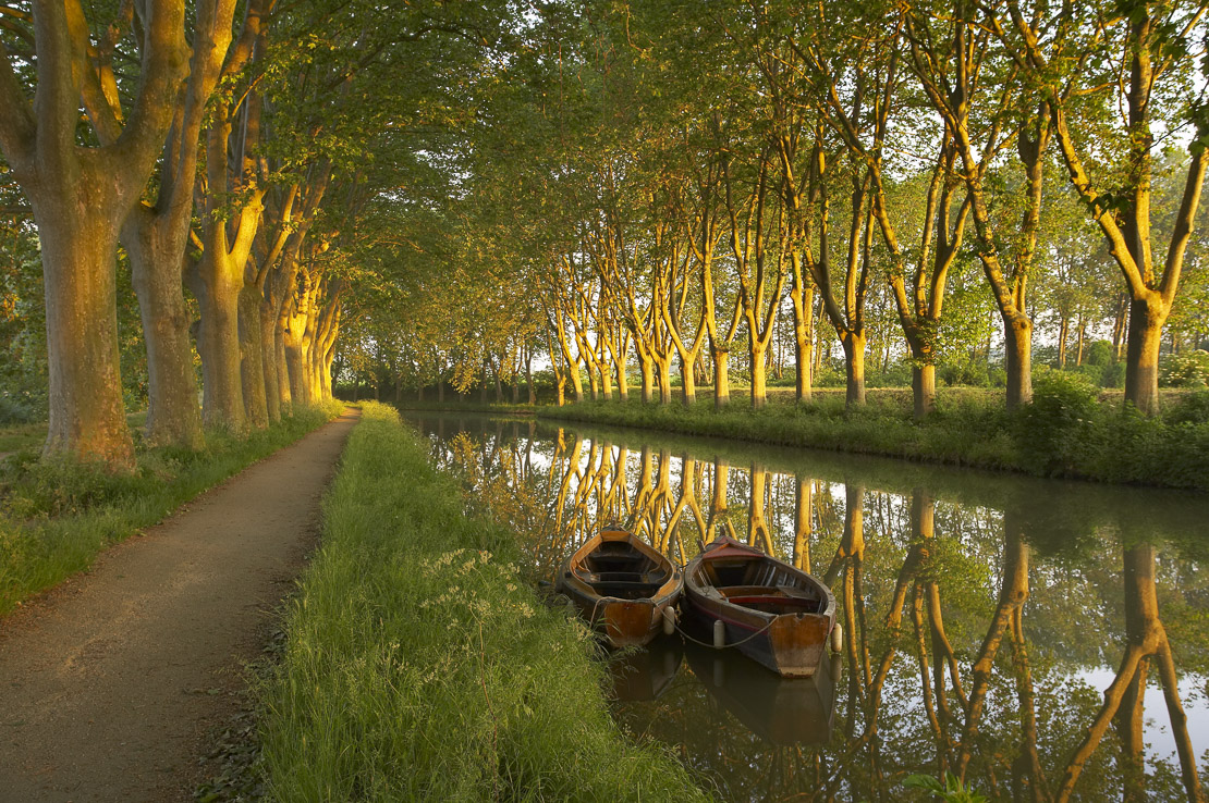 row boats on the Canal du Midi nr Carcassonne, Languedoc, France
