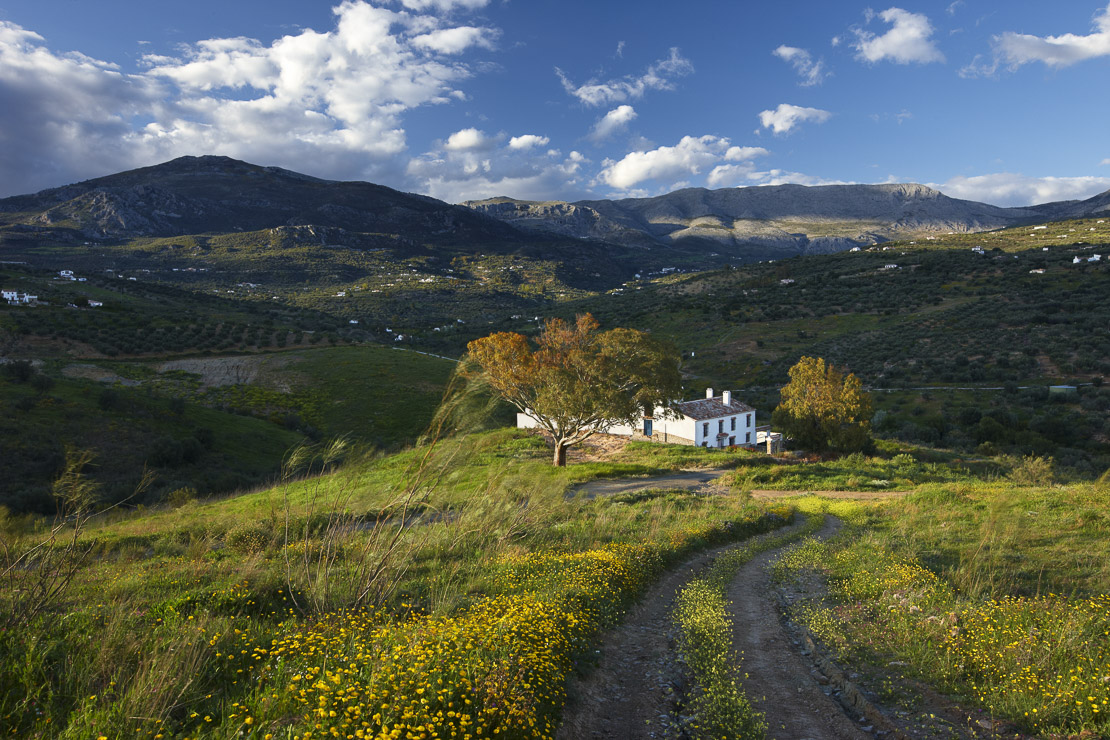 A house on the campo nr Los Molinos, Periana, Andalucia, Spain