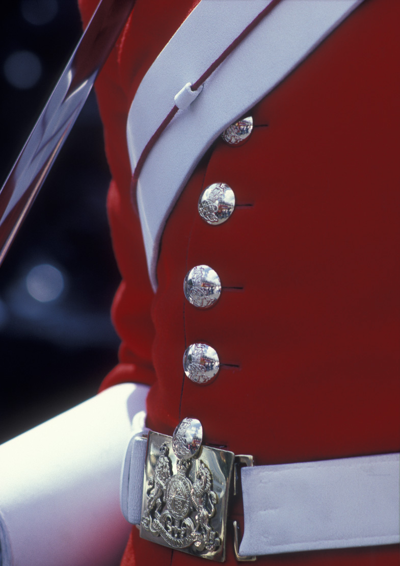 detail of a trooper of the Household Cavalry (the life Guards) on sentry duty at Horse Guards, Whitehall, London, England, UK