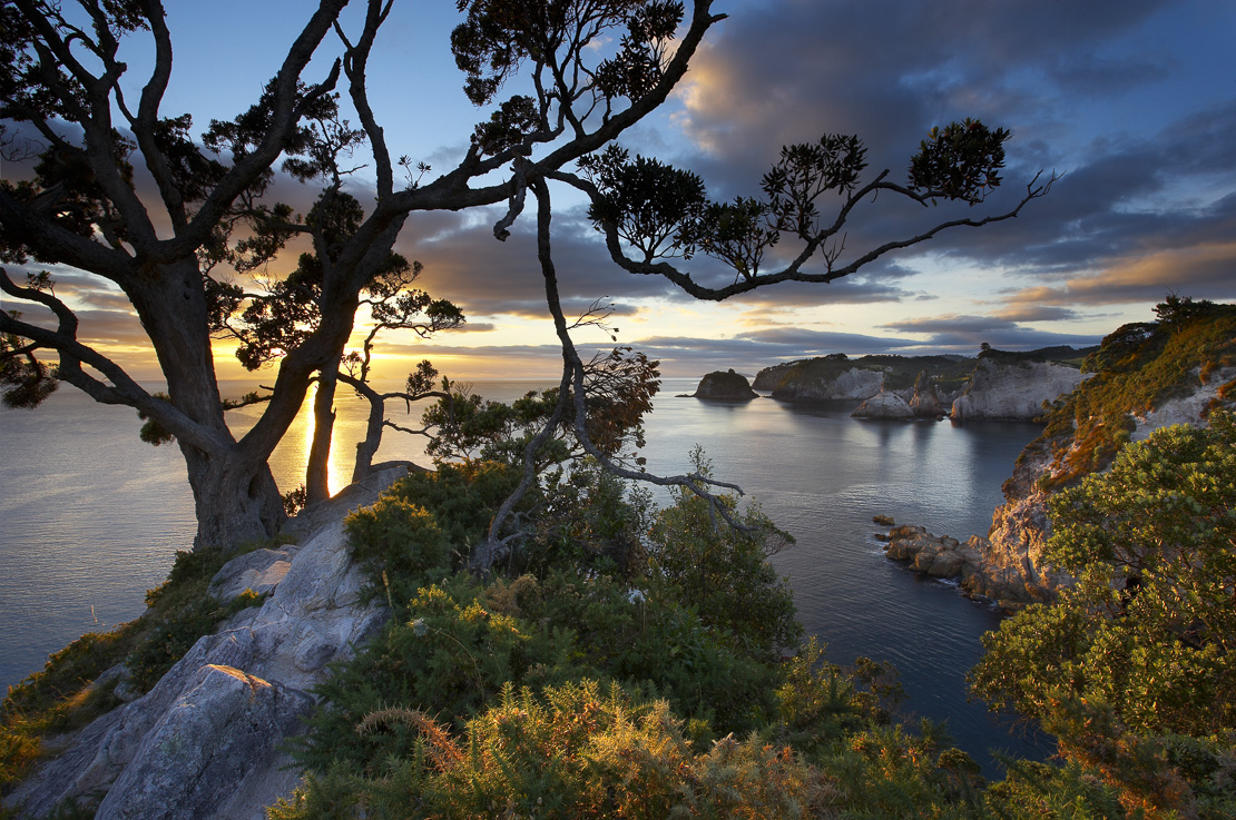 sunrise at Te Pare Point, nr Hahei, Coromandel Peninsula, North Island, New Zealand. (NR)