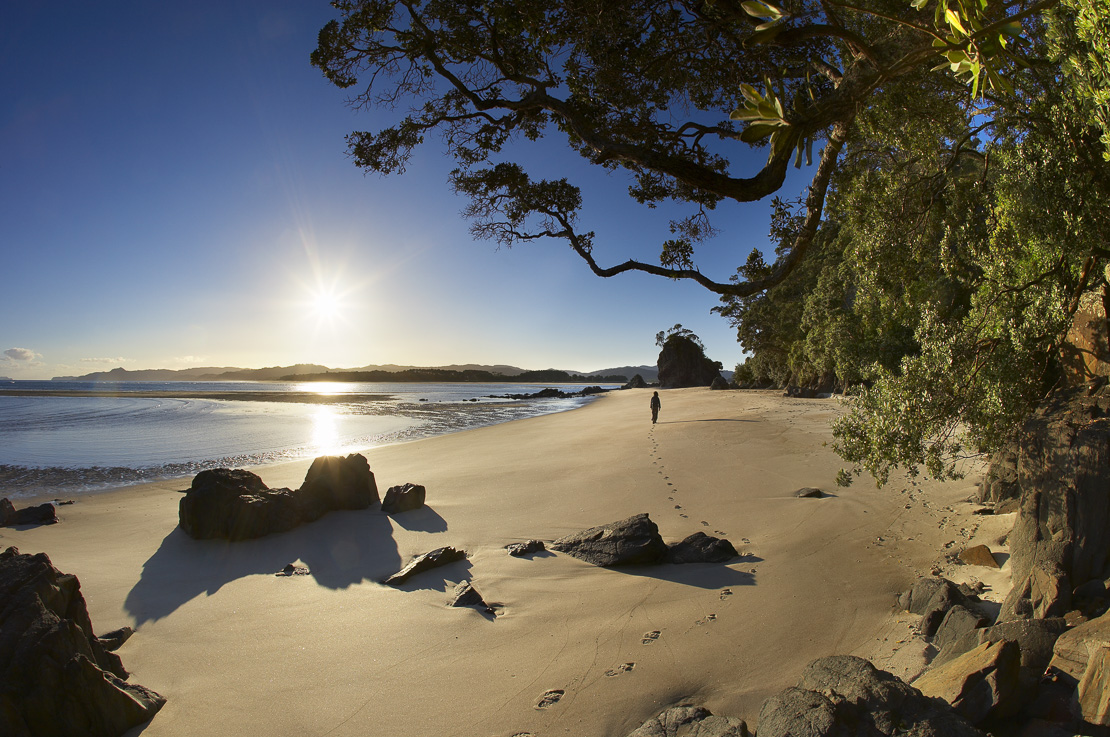a woman on a deserted beach at Opera Point, Whangapoua Harbour, Coromandel Peninsula, North Island, New Zealand. (MR)