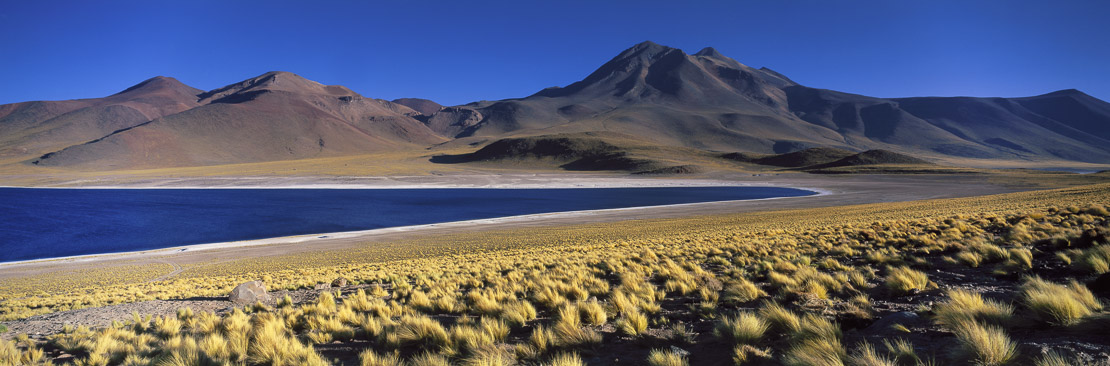 Laguna Miscanti, the Andes, Northern Chile