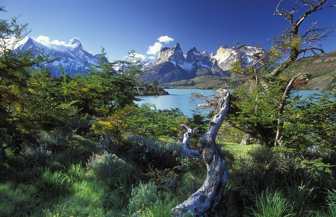 the Cuernos del Paine, Lake Pehoe, Torres del Paine, Patagonia, Chile