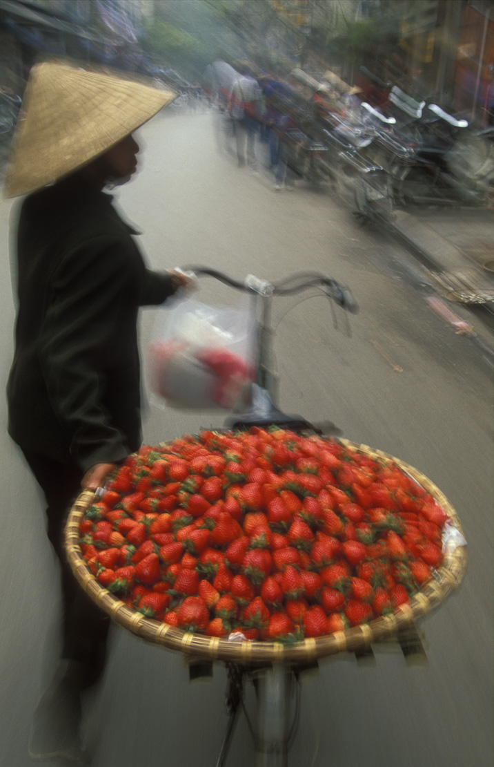 strawberries on the move, a woman with bicycle and a platter of fresh strawberries, street scene, Hanoi, Vietnam