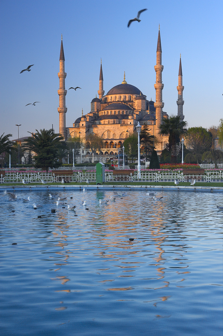 the Blue Mosque reflected in the lake in Sultanahmet Square at dawn, Istanbul, Turkey. (NR)