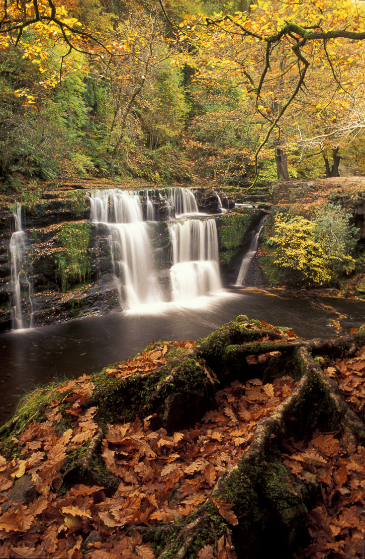 Sgwd y Panwr waterfall in autumn, Brecon Beacons National Park, Powys, Wales, UK