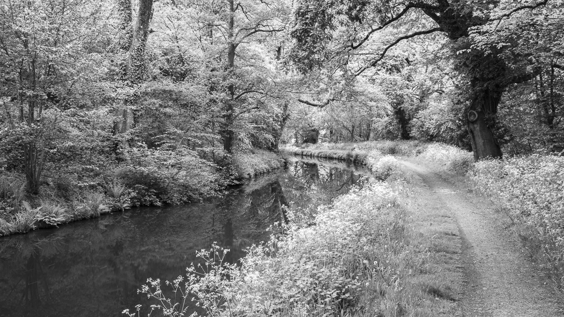 The Brecon to Monmouth Canal near Talybont on Usk, Brecon Beacons National Park, Powys, Wales, UK